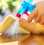 clean-safe-sm